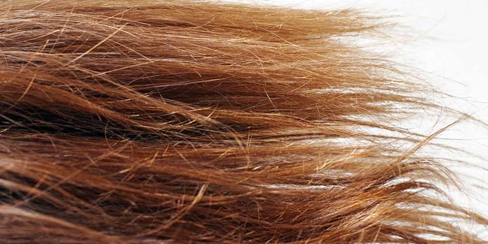 Cura dei capelli: come prevenire le doppie punte
